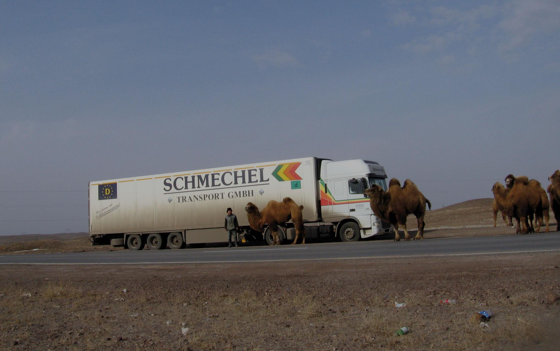 Über Stock und Stein bis Kasachstan